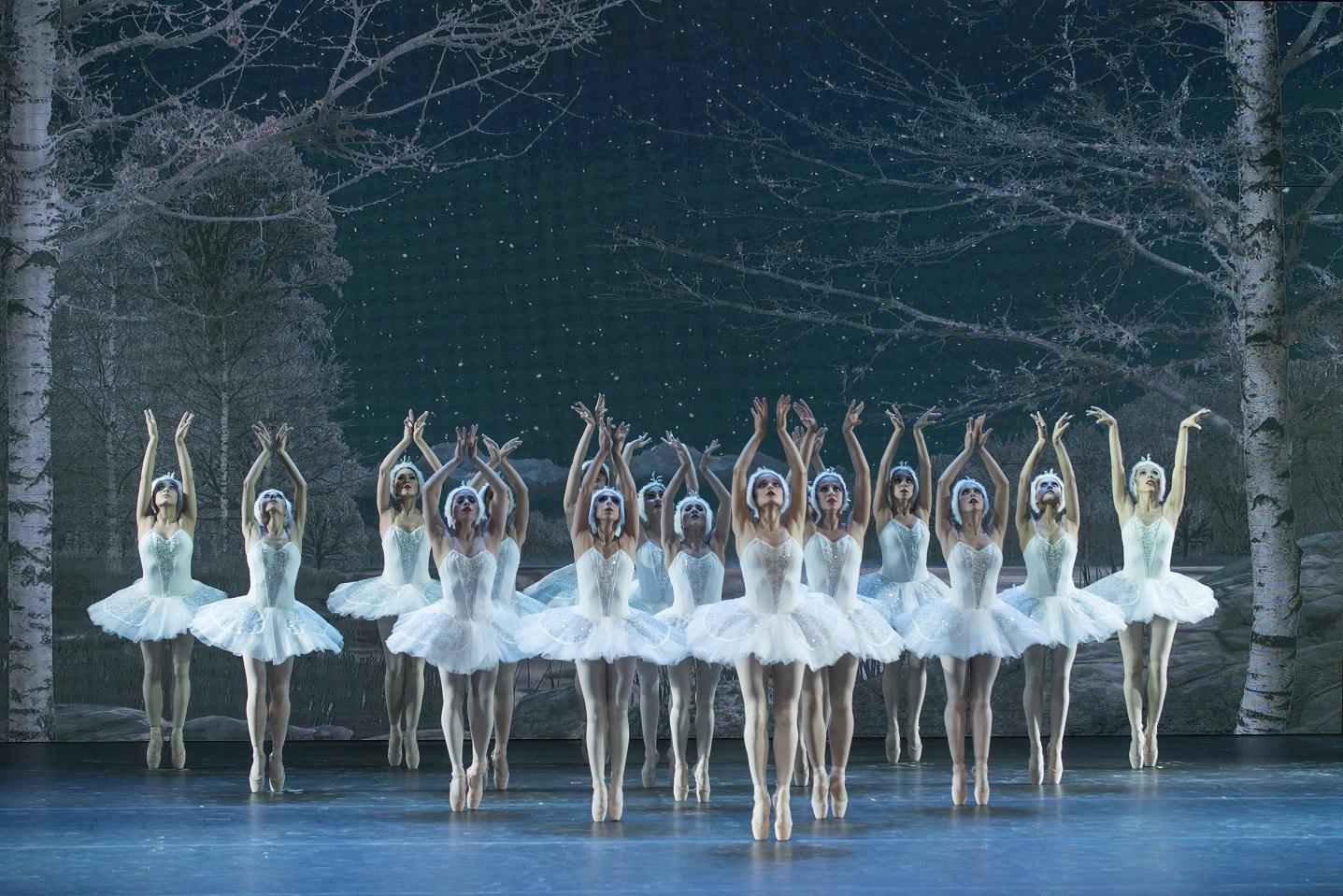 """Photo of En forma gratuita presentarán en iquique ballet""""El Lago de los Cisnes"""""""